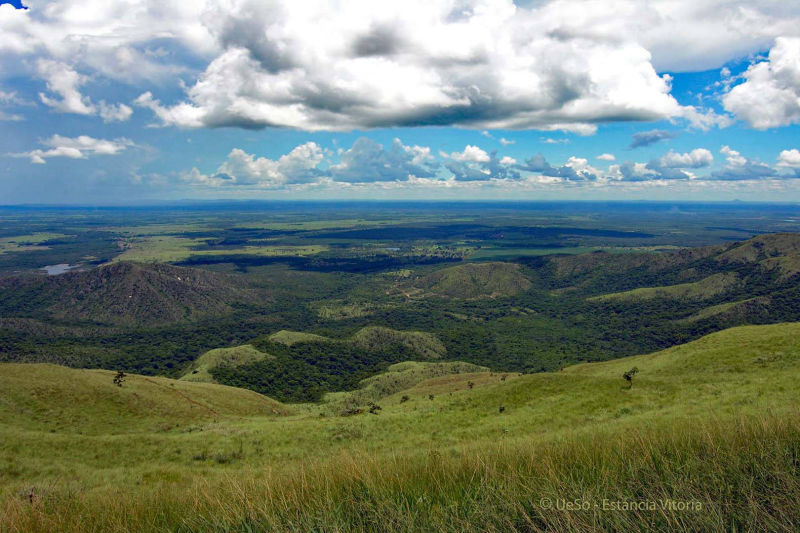 View from Table Mountain, Cerrado Mato Grosso