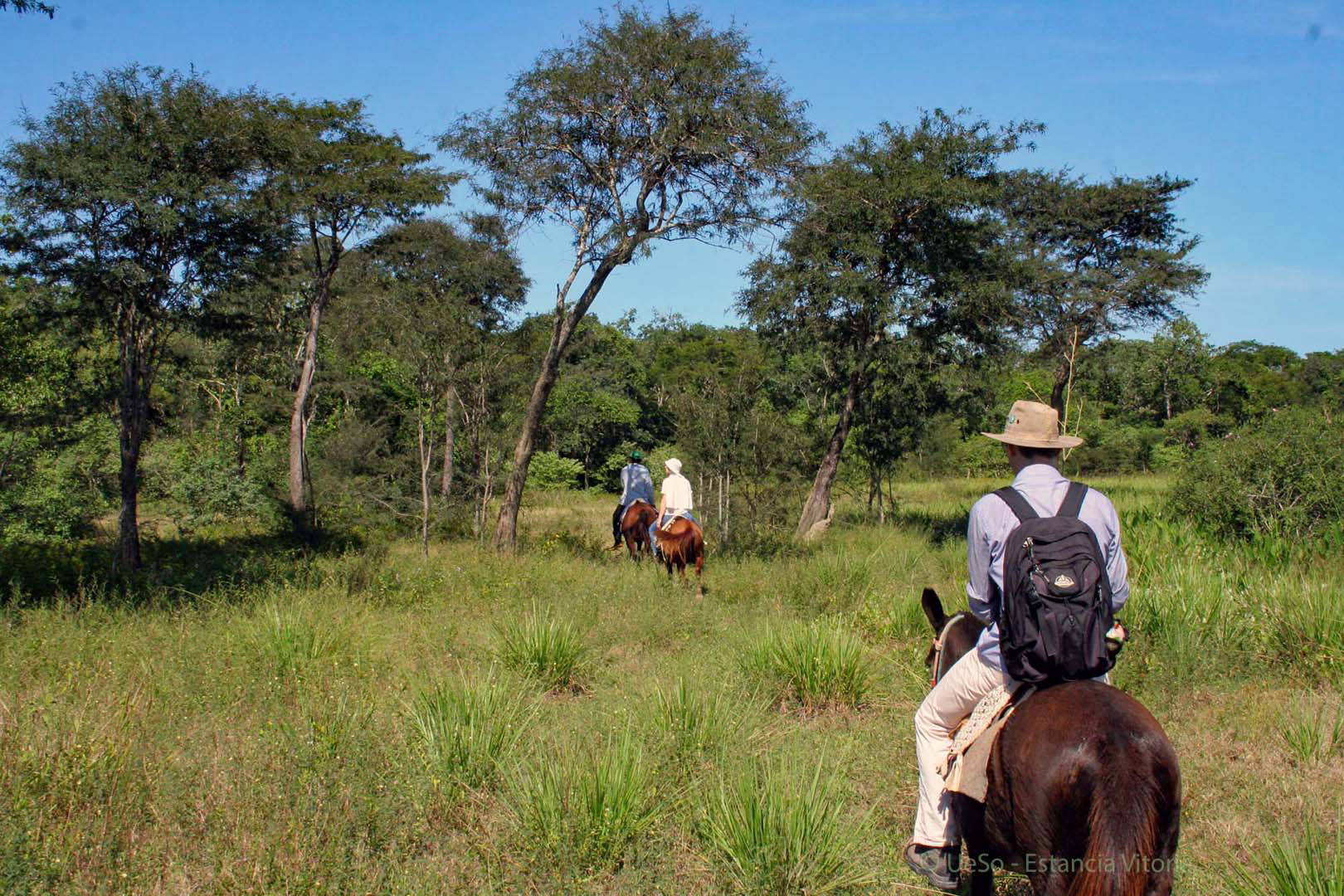 Excursions on horseback, discovery tours