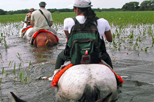 Tour 2 - Hikes in the Pantanal