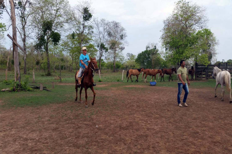 Preparation for horse riding
